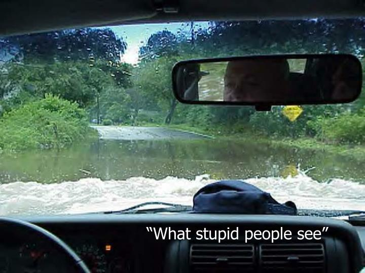 """What stupid people see"""