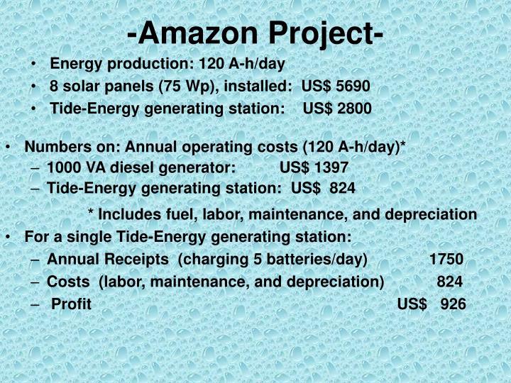 -Amazon Project-