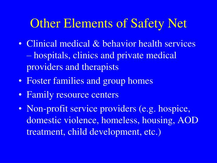 Other Elements of Safety Net