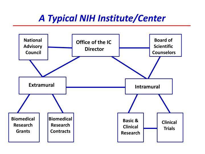 A Typical NIH Institute/Center