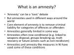 what is an amnesty