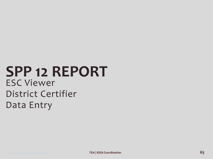 SPP 12 Report