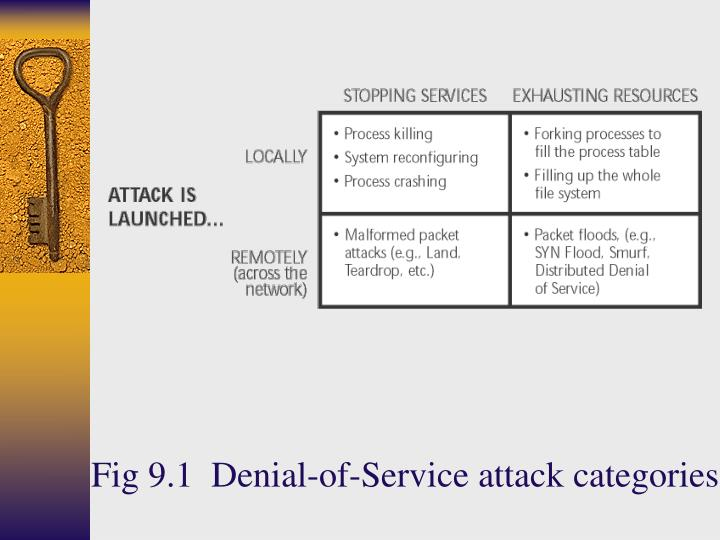 Fig 9.1  Denial-of-Service attack categories