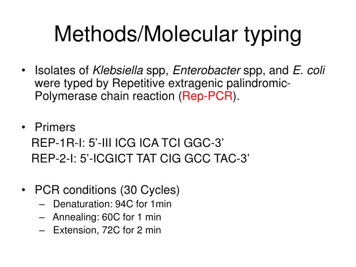Methods/Molecular typing