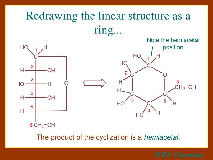 Redrawing the linear structure as a ring...