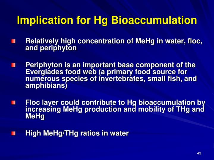 Implication for Hg Bioaccumulation