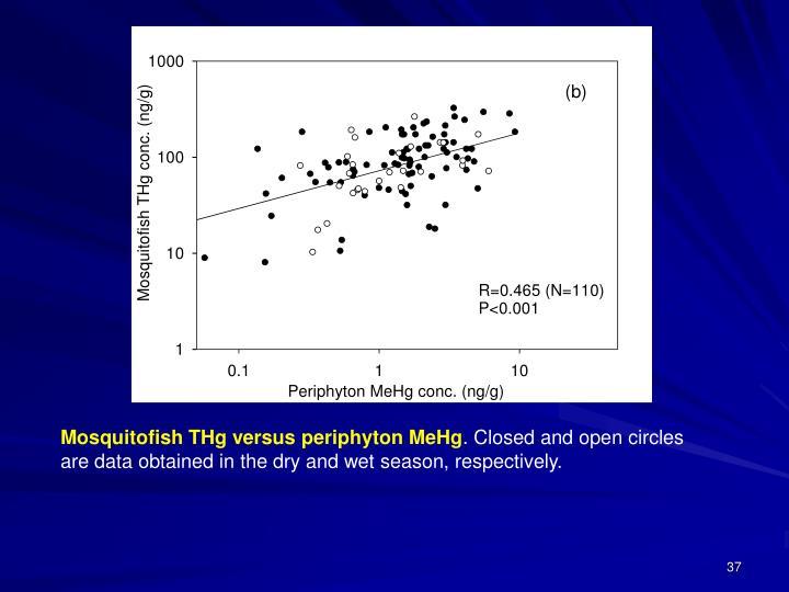 Mosquitofish THg versus periphyton MeHg
