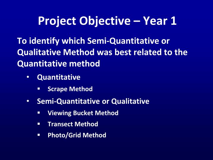 Project Objective – Year 1