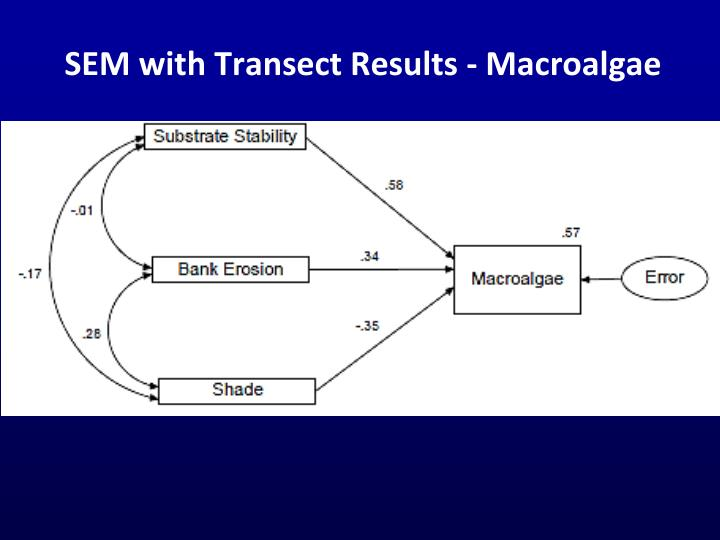 SEM with Transect Results - Macroalgae