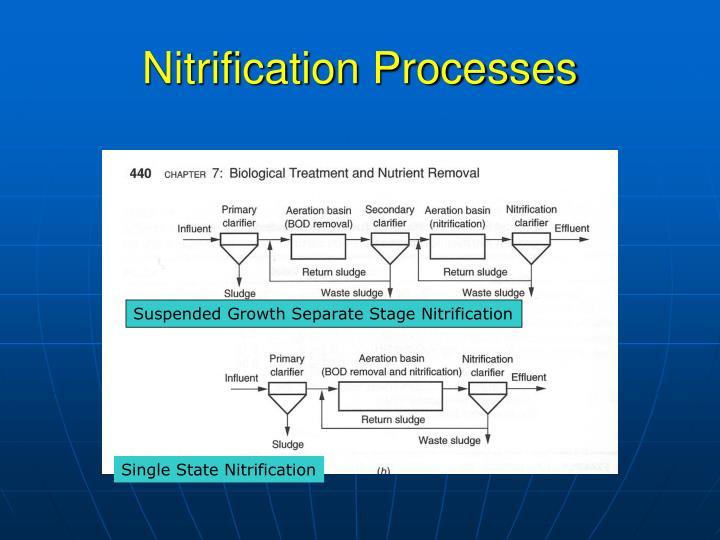 Nitrification Processes