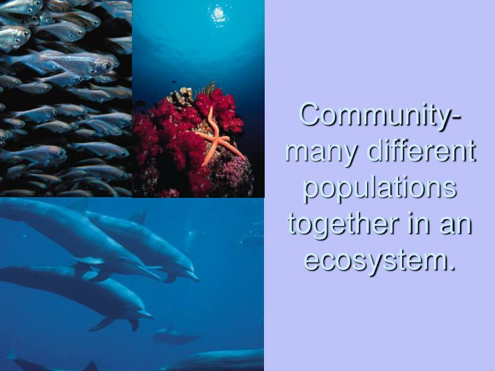 Community-many different populations together in an ecosystem.