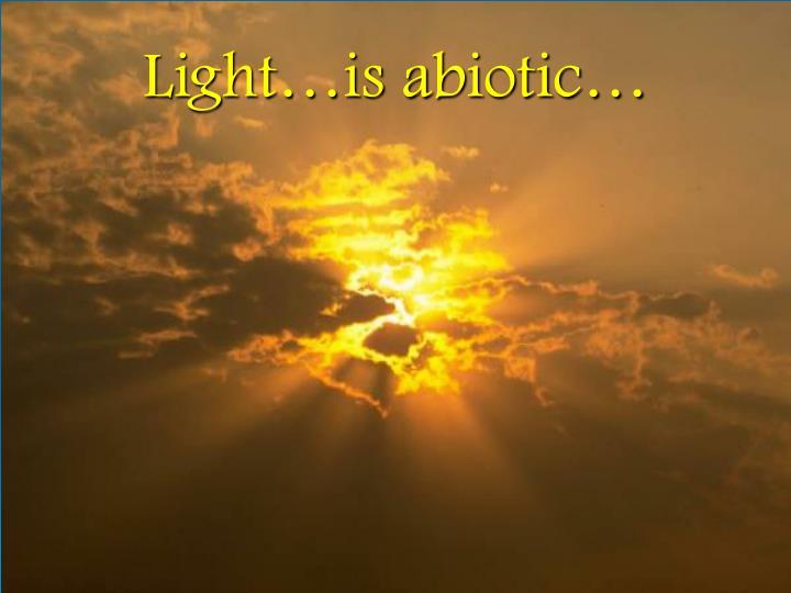 Light…is abiotic…