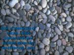 soil is made up of rocks little pieces that are broken down by weathering and