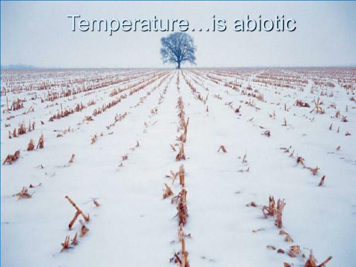 Temperature…is abiotic