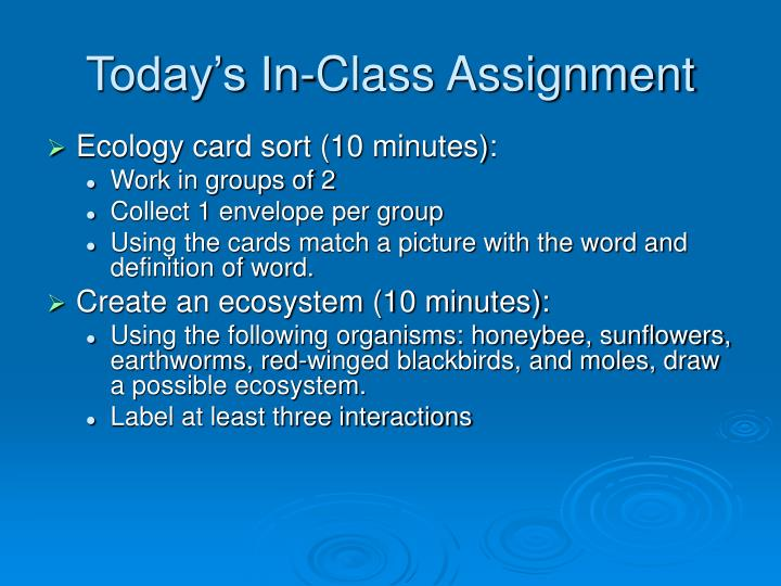 Today's In-Class Assignment