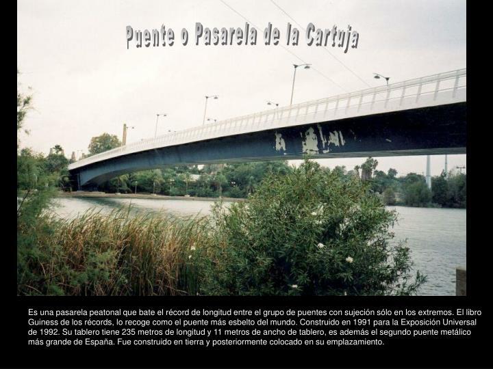 Puente o Pasarela de la Cartuja
