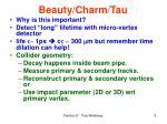 beauty charm tau