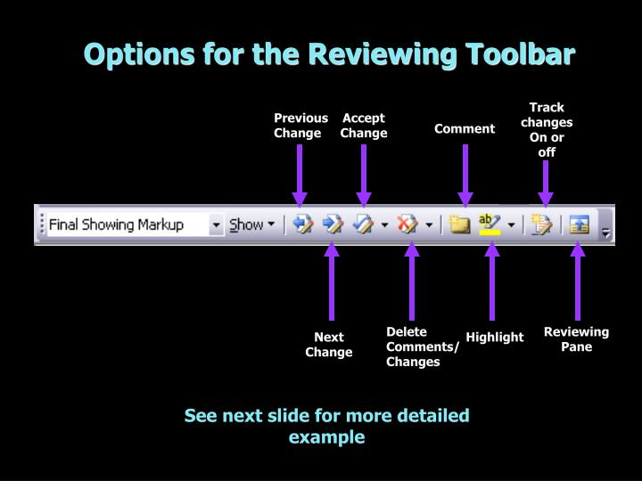 Options for the Reviewing Toolbar
