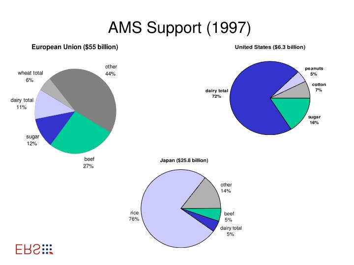 AMS Support (1997)