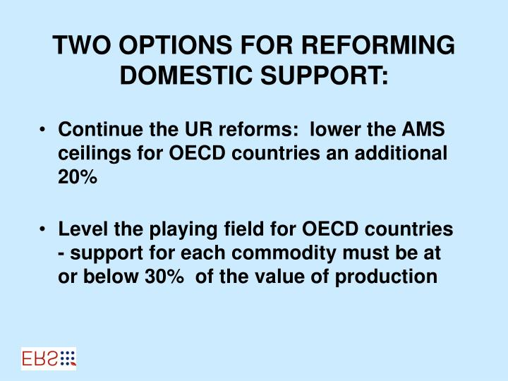 TWO OPTIONS FOR REFORMING DOMESTIC SUPPORT: