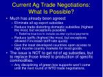 current ag trade negotiations what is possible