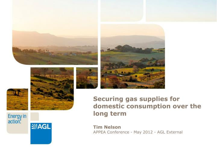 Securing gas supplies for domestic consumption over the long term