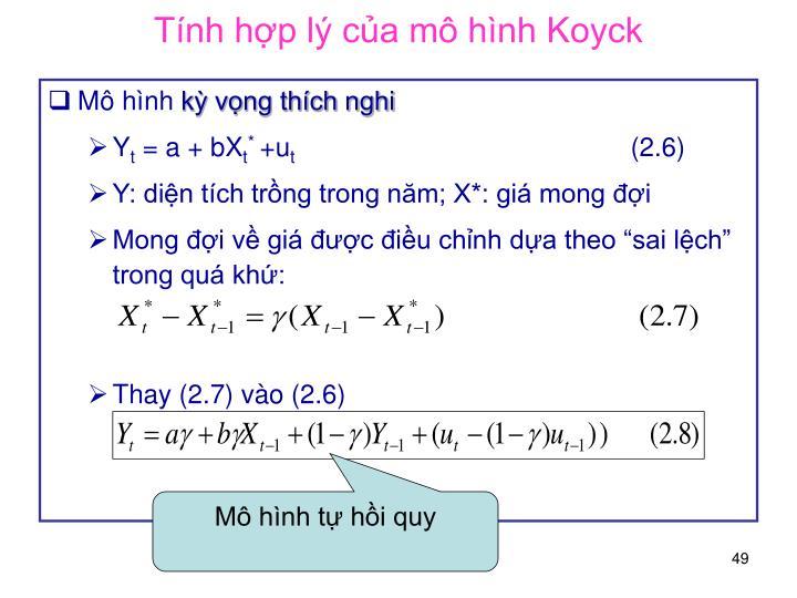 Tính hợp lý của mô hình Koyck