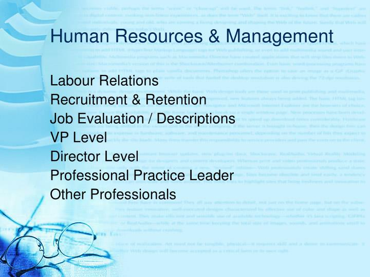 Human Resources & Management