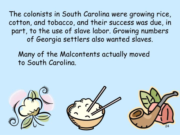The colonists in South Carolina were growing rice, cotton, and tobacco, and their success was due, in part, to the use of slave labor. Growing numbers