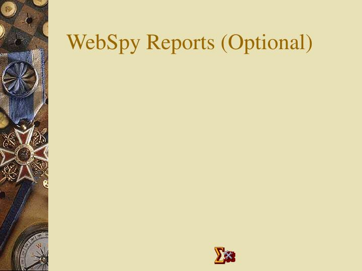 WebSpy Reports (Optional)