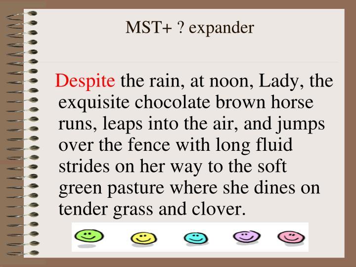 MST+ ? expander