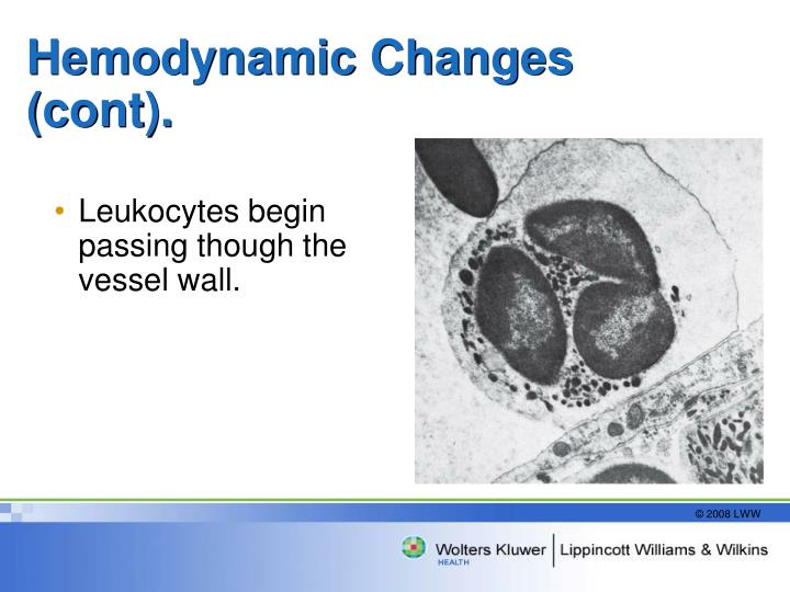 Hemodynamic Changes (cont).
