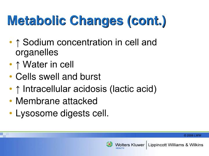 Metabolic Changes (cont.)