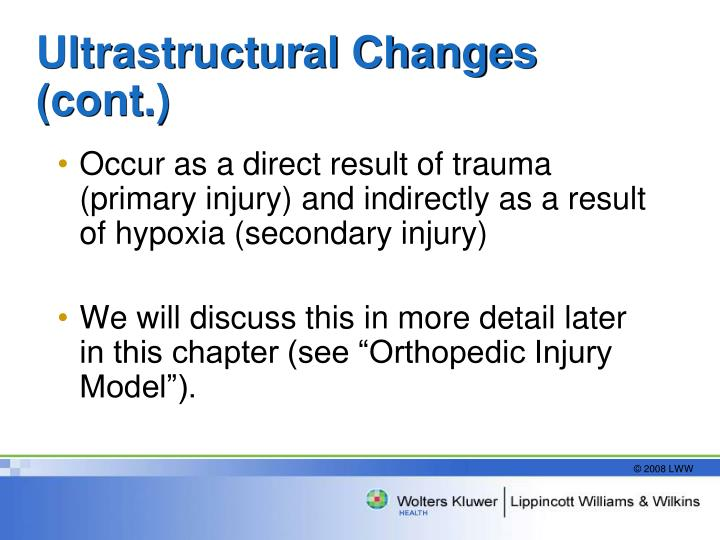 Ultrastructural Changes (cont.)