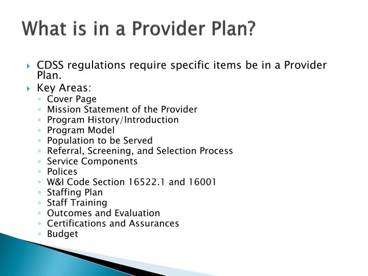 What is in a Provider Plan?