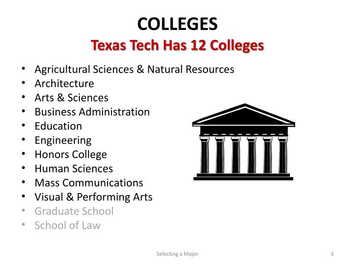 Colleges texas tech has 12 colleges