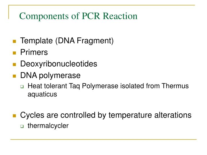 Components of PCR Reaction