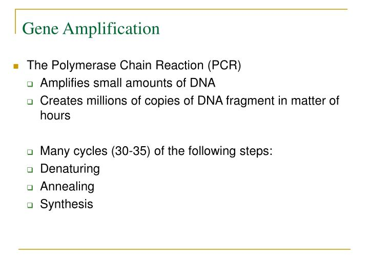 Gene Amplification