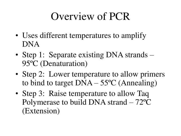 Overview of PCR