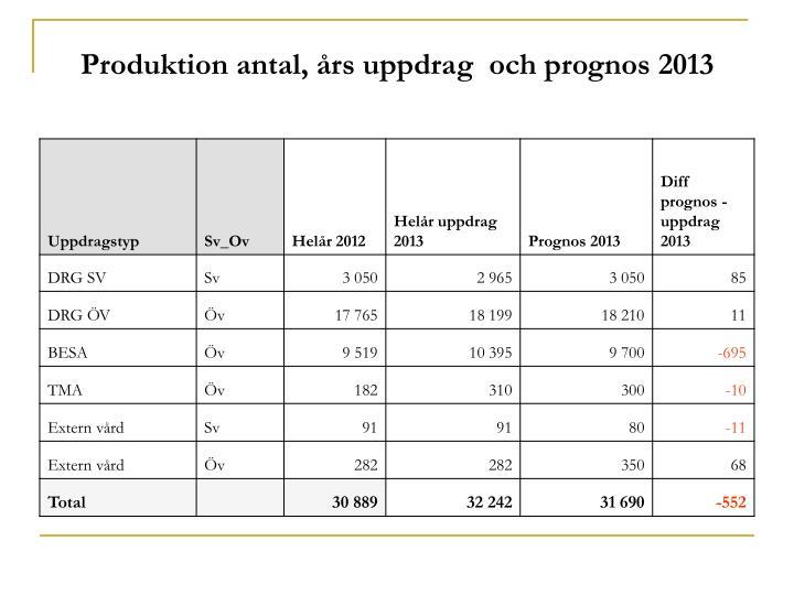 Produktion antal, års uppdrag  och prognos 2013