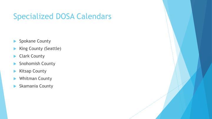 Specialized DOSA Calendars