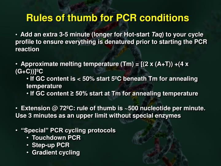 Rules of thumb for PCR conditions