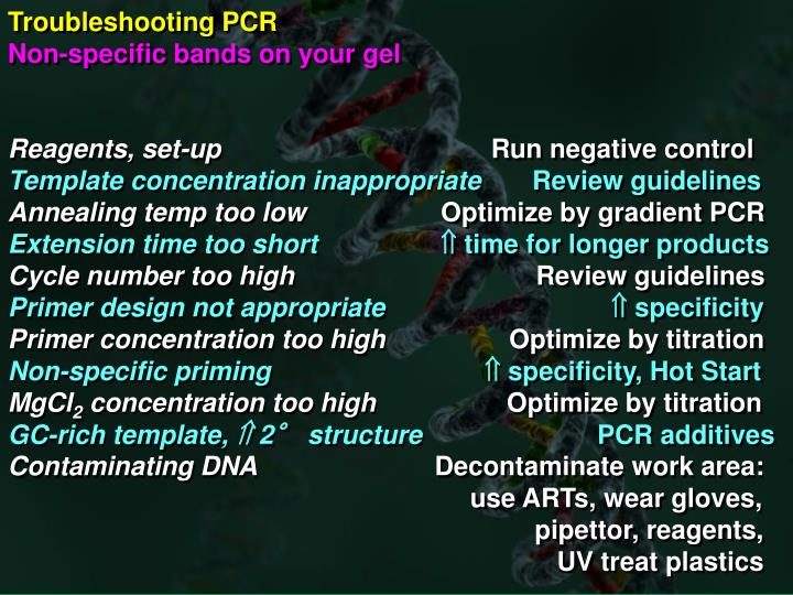 Troubleshooting PCR