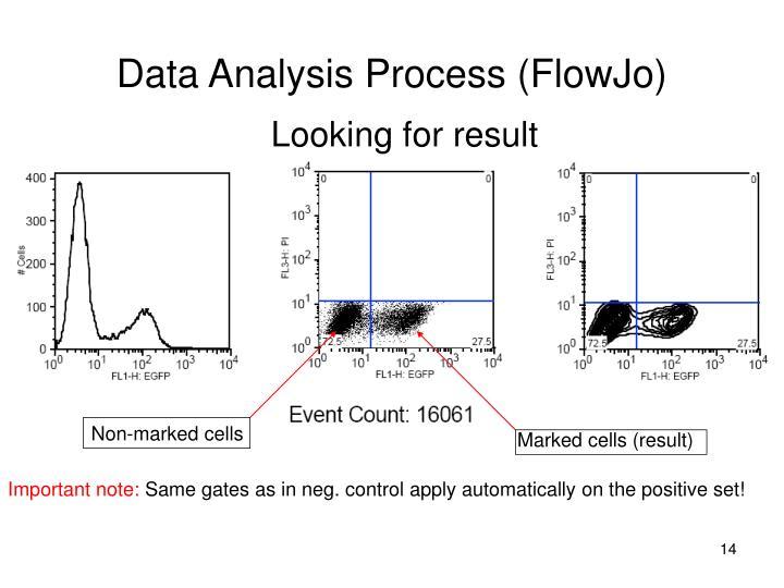 Data Analysis Process (FlowJo)