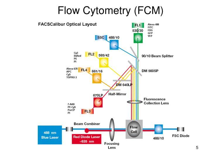 Flow Cytometry (FCM)