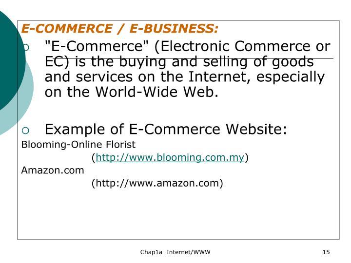 E-COMMERCE / E-BUSINESS: