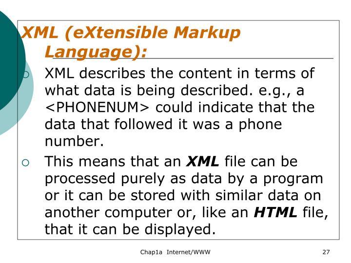 XML (eXtensible Markup Language):