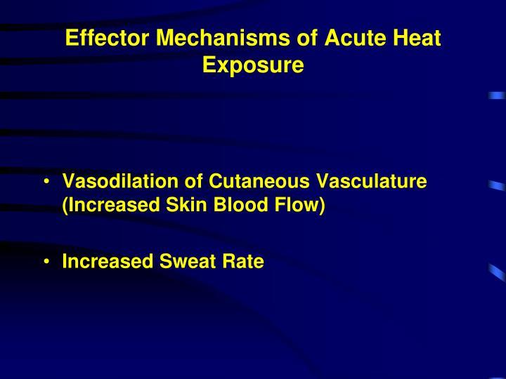 Effector Mechanisms of Acute Heat Exposure