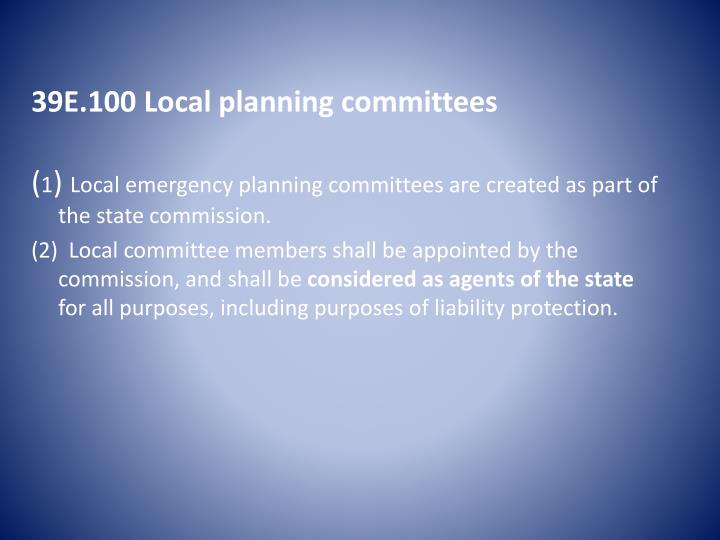 39E.100 Local planning committees
