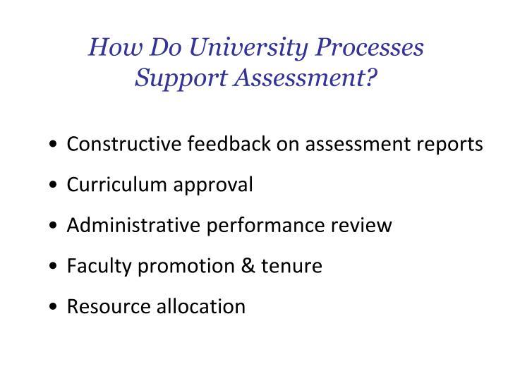 How Do University Processes